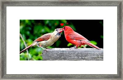 Framed Print featuring the photograph Smooches by Ecinja Art Works