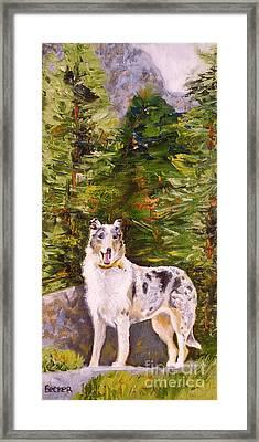 Smooth Collie Hiker Framed Print by Susan A Becker