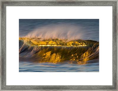 Smooth Crest  73a1818 Framed Print by David Orias