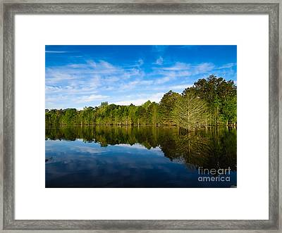 Smooth Reflection Framed Print