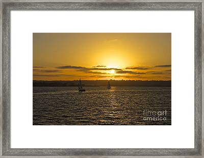 Smooth Sailing Framed Print by Claudia Ellis