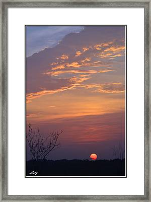 Smooth Sunset Framed Print by Leticia Latocki