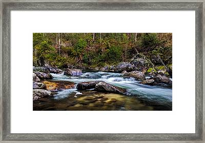 Smoothing Agent Framed Print