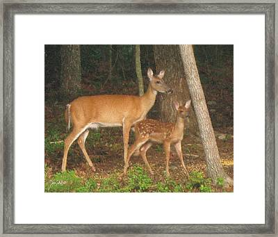 Smudgie And Fawn Pastel Framed Print