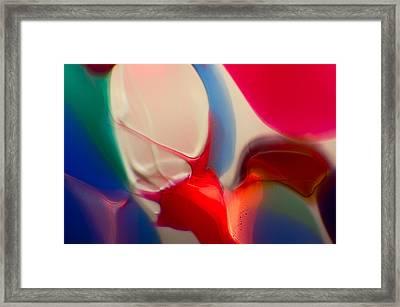 Snails Paradise Framed Print by Omaste Witkowski