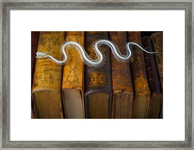 Snake And Antique Books Framed Print by Garry Gay