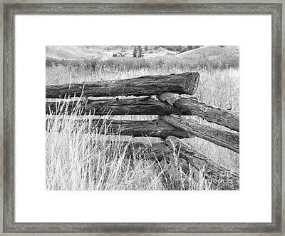 Framed Print featuring the photograph Snake Fence  by Ann E Robson