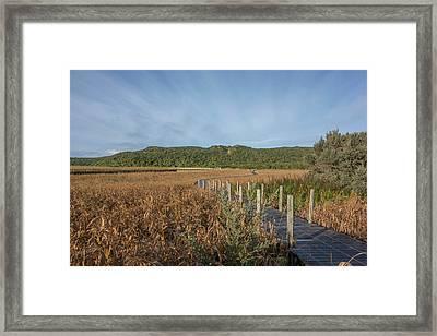 Snake Path Framed Print
