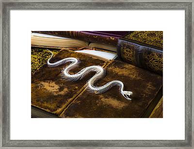 Snake Skeleton And Old Books Framed Print by Garry Gay