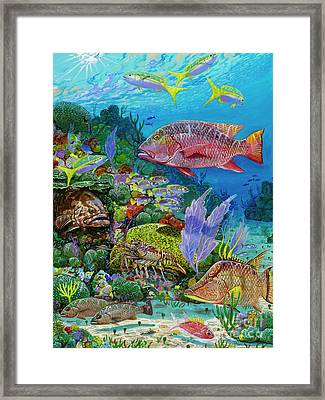 Snapper Reef Re0028 Framed Print by Carey Chen