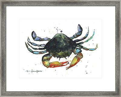 Snappy Crab Framed Print by Alison Fennell