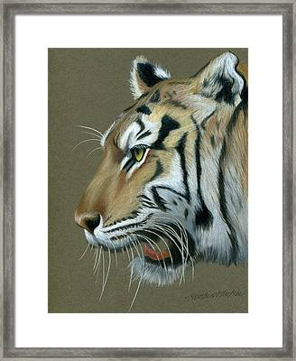 Snarl Framed Print by Heather Mitchell