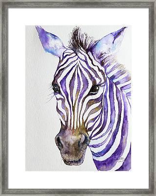 Snazzy_ Purple Stripes Framed Print