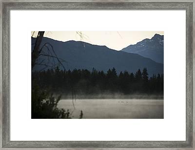 Sneak Peak Framed Print by Aaron Bedell