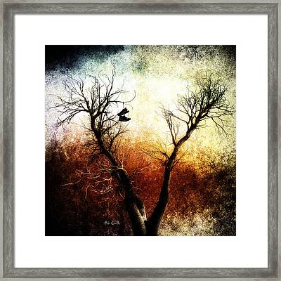 Sneakers In The Tree Framed Print by Bob Orsillo