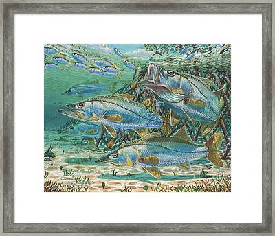 Snook Attack In0014 Framed Print by Carey Chen