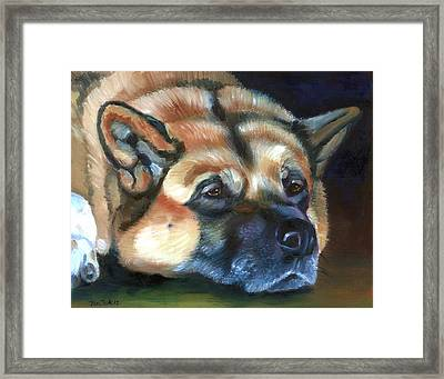 Snooze Framed Print by Lyn Cook