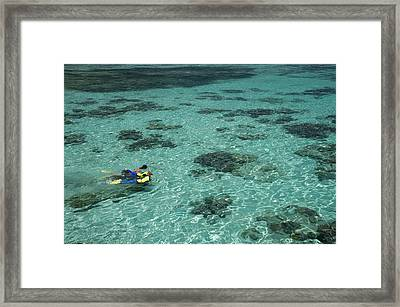 Snorkelers And Reef, Green Island Framed Print by David Wall