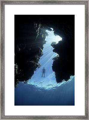 Snorkeller And Coral Reef Framed Print