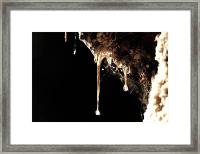 Snottites Framed Print by Thierry Berrod, Mona Lisa Production