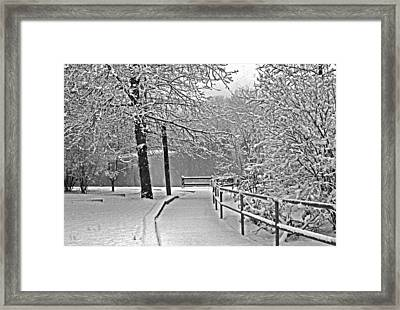 Framed Print featuring the photograph Snow Along The Path by Andy Lawless