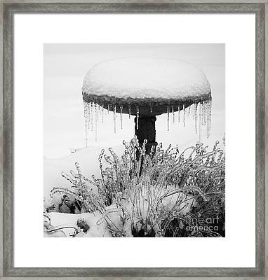 Snow And Ice Served-up Framed Print