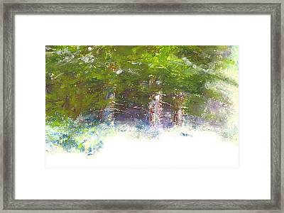 Snow And Pines Framed Print