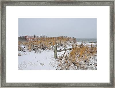Snow And Sand Framed Print by Catherine Reusch Daley