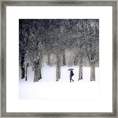 Woman With Umbrella Walking In Park Covered With Snow Framed Print by Aldona Pivoriene