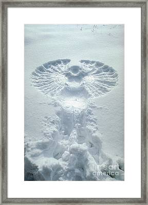 Snow Angel Framed Print by Bill Longcore
