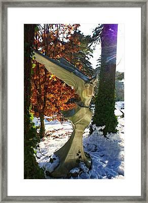 Snow Angel Framed Print by Chrystyne Novack