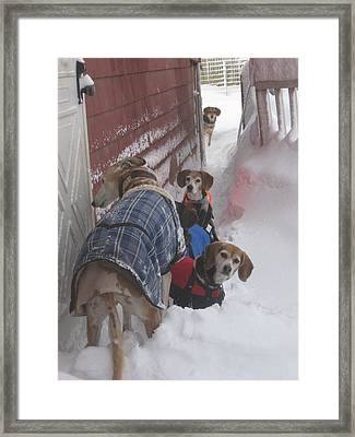 Snow Angels Framed Print