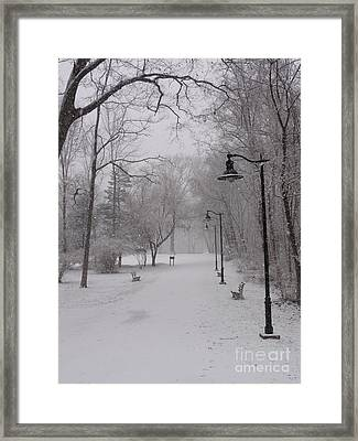 Snow At Bulls Island - 29 Framed Print