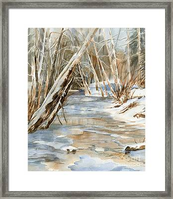 Snow At Cameron Creek Framed Print by Sharon Freeman