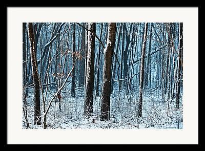 Tim Michael Framed Prints
