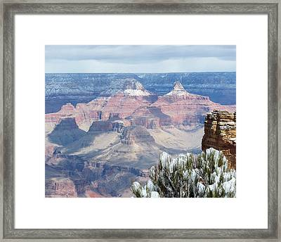 Snow At The Grand Canyon Framed Print