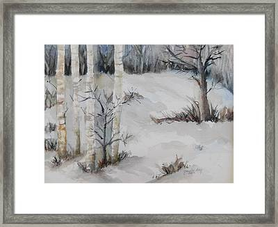 Snow Birches Framed Print