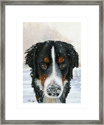 Snow Bumper Framed Print
