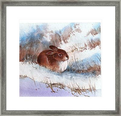 Snow Bunny Framed Print by Richard Hinger