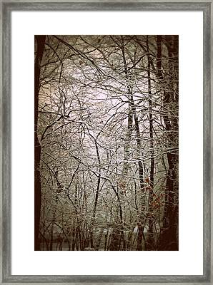 Snow Cover Forest Framed Print by Dawdy Imagery
