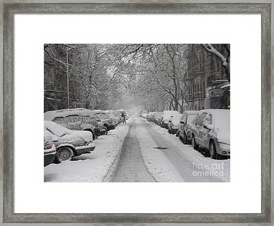 Snow Cover Framed Print by James Dolan
