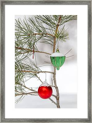 Snow Covered Christmas Ornaments Framed Print