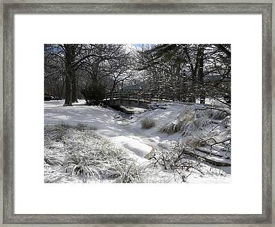Snow Covered Dream Framed Print by Teresa Schomig