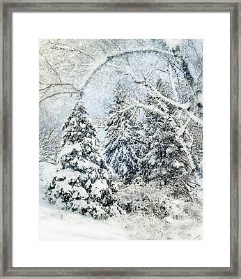 Snow Covered  Framed Print by Elaine Manley