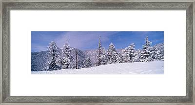 Snow Covered Landscape, Colorado, Usa Framed Print by Panoramic Images