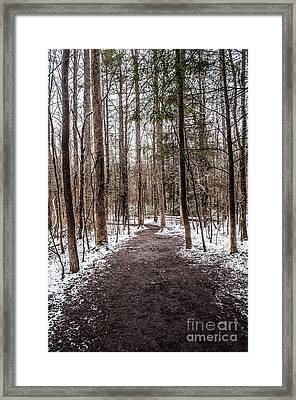 Framed Print featuring the photograph Snow Covered Trail by Debbie Green