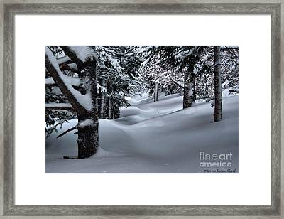 Snow Covered Trail Framed Print by Steven Reed