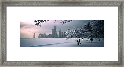 Snow Covered Tree On The Beach Framed Print by Panoramic Images