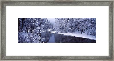Snow Covered Trees Along A River Framed Print by Panoramic Images