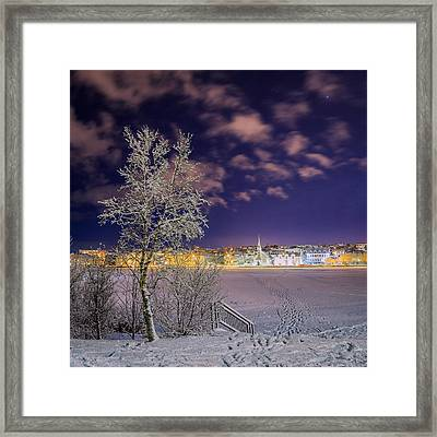 Snow Covered Trees And Frozen Pond Framed Print by Panoramic Images